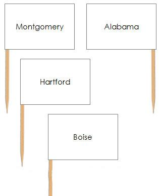 United States Capital Cities Pin Flags - Montessori geography materials