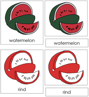 Watermelon Nomenclature Cards (red) - Montessori Print Shop
