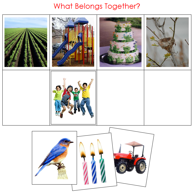 What Belongs Together? - Montessori Print shop