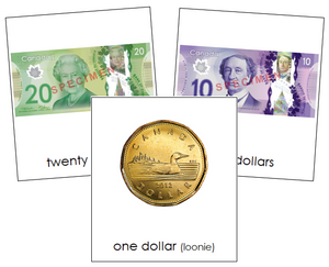 Canadian Currency Cards - Montessori Print Shop