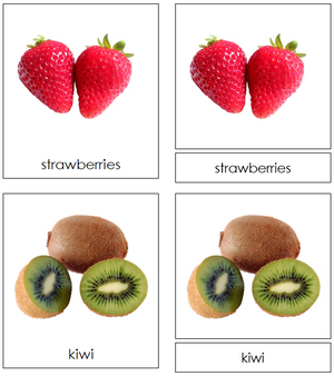 types of fruit cards - Montessori Print Shop