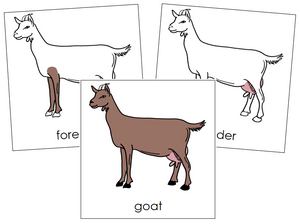 Goat Nomenclature Cards - Montessori Print Shop