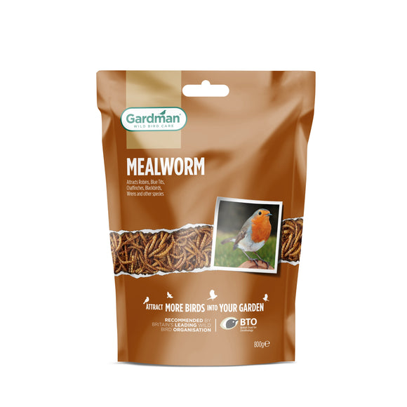 Mealworm 800g