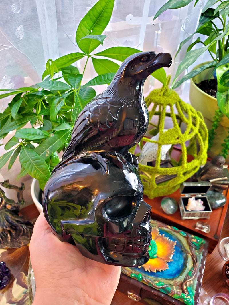 XL Carved Obsidian Human Skull with Crow on Top