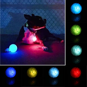 Rainbow LED Dog Ball
