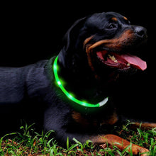 LED Dog Collar Necklace - Rechargeable - Water Resistant