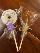 Wild Dandelion Lollies (10 pack)