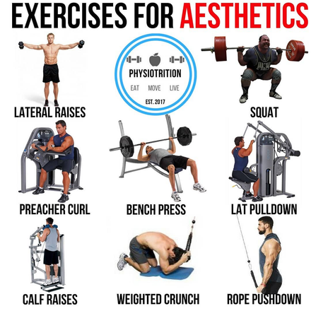 8 Crucial Exercises To Improve Your Aesthetic