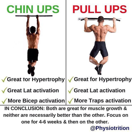 Which Is Better, Chin Ups Or Pull Ups?