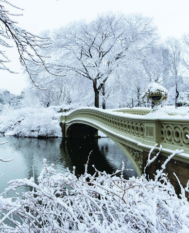 Snowy Bow Bridge in Central Park Custom Art Print