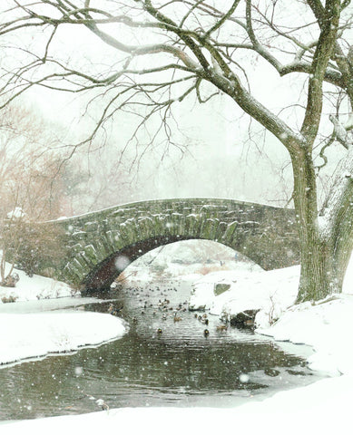 Snowy Central Park Custom Art Print