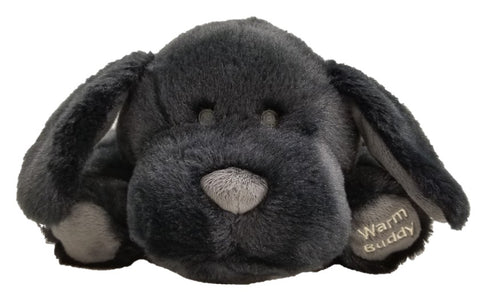 Labrador puppy-black floppy eared w/gray nose & paws - front face