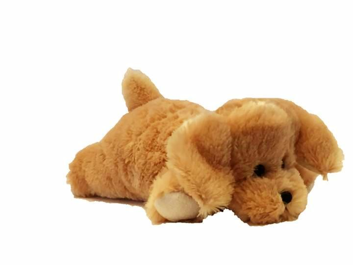 Small Warm Golden Labrador Puppies Make Perfect Sleeping Aids For Kids