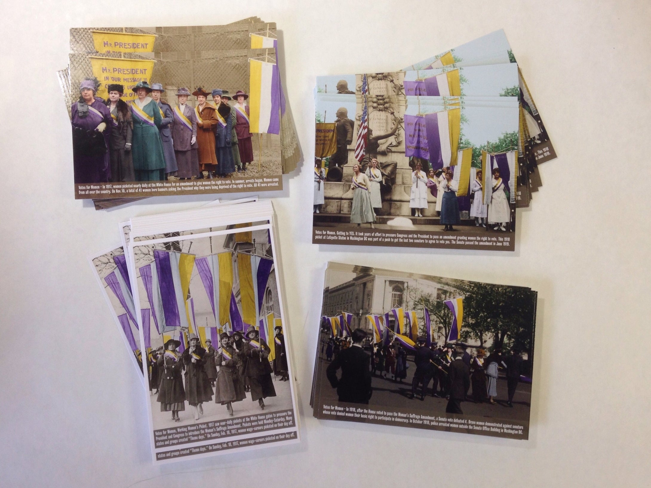 Votes for Women Postcards— 100 pack