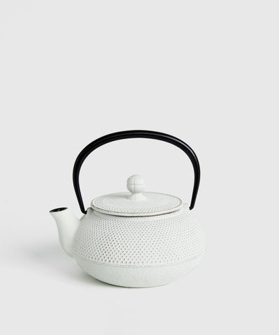 Cast-Iron Japanese Teapot