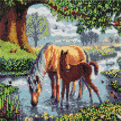 Crystal Art, Fell Ponies