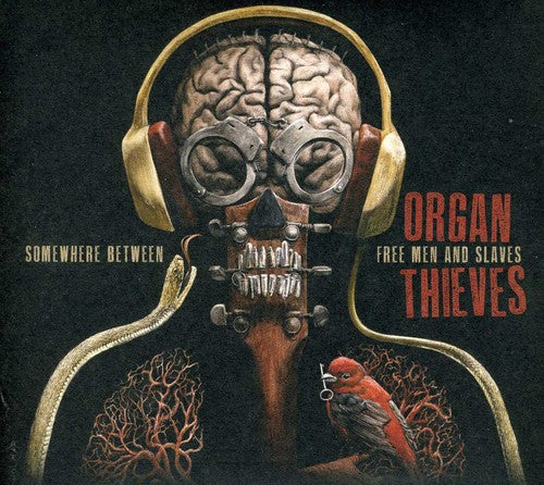 Organ Thieves: Somewhere Between Free Men & Slaves