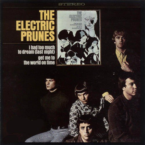 The Electric Prunes: I Had Too Much To Dream