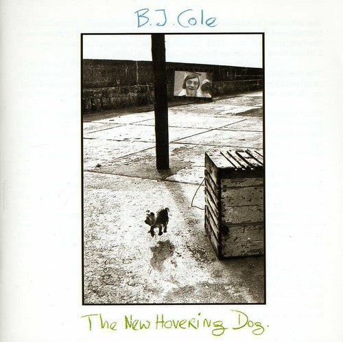 Bj Cole: New Hovering Dog