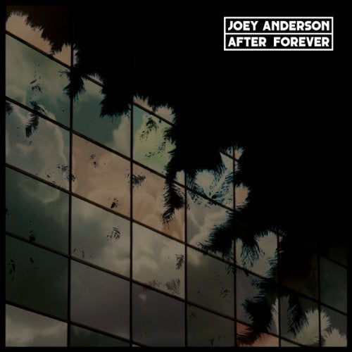 Joey Anderson: After Forever