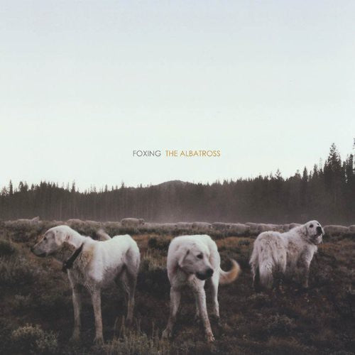 Foxing: Albatross