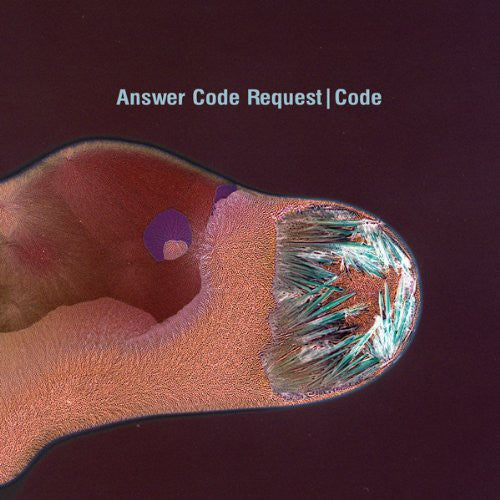 Answer Code Request: Code