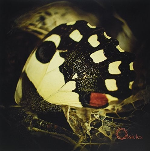 Ossicles: Music for Wastelands