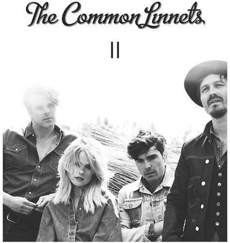 Common Linnets: II