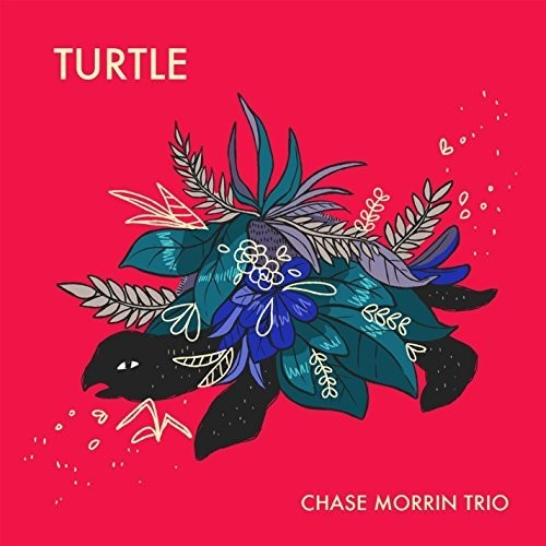 Chase Morrin: Turtle