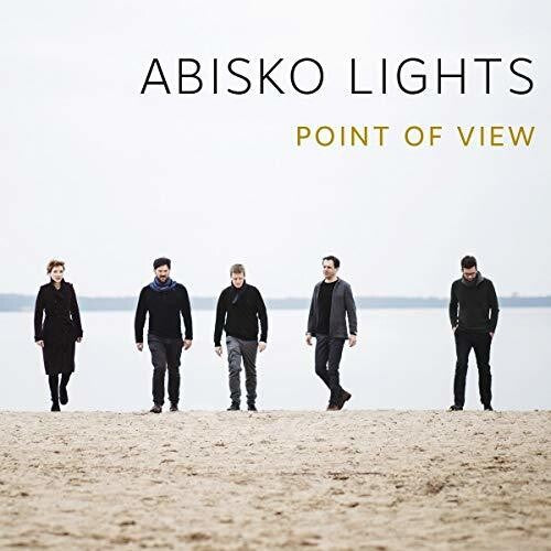 Abisko Lights: Point Of View