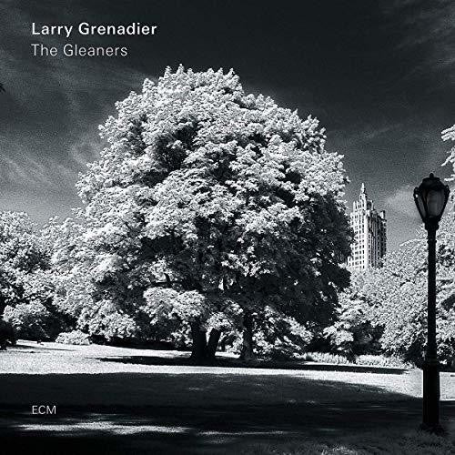 Larry Grenadier: The Gleaners