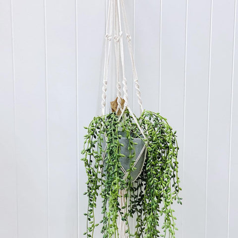 Hanging & Vertical Planters