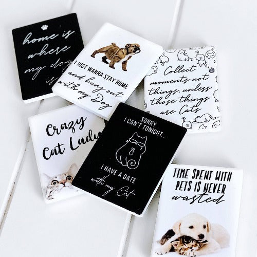 "SPLOSH | Pet Magnets | Cat Date | ""Sorry I can't tonight, I have a date with my cat"" 