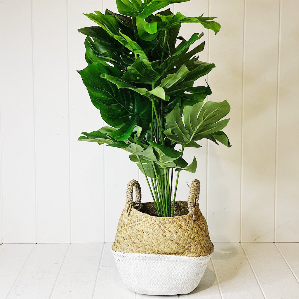 Liven up your indoor spaces with our Artificial Monstera in Rattan Pot. Perfect for a display or adding a splash of green to a bathroom or bedroom, without the hassle of maintenance. 67cm| Bliss Gifts & Homewares | Unit 8, 259 Princes Hwy Ulladulla | South Coast NSW | Online Retail Gift & Homeware Shopping | 0427795959, 44541523