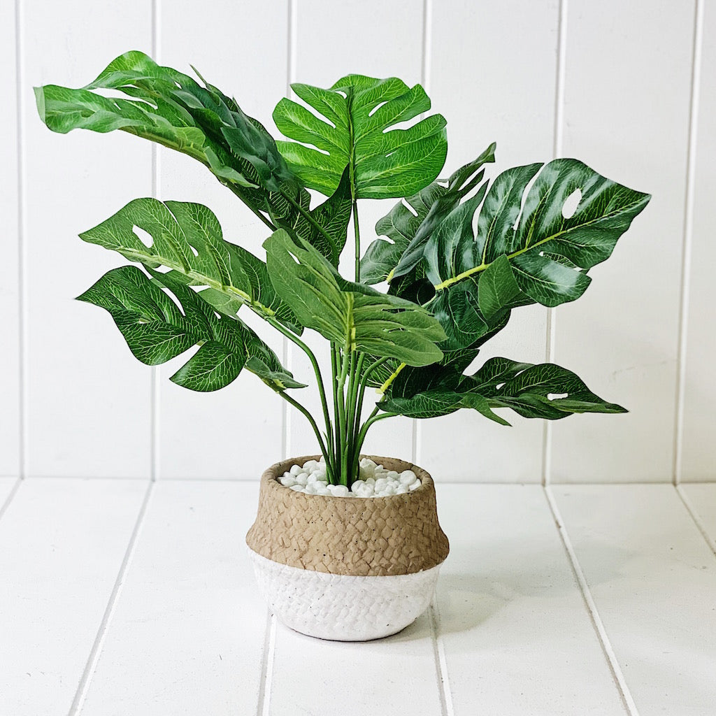 Liven up your indoor spaces with our Artificial Tropical Fern in Two Tone Pot. It help creates that touch of tropical green in your space with its long lasting beauty. Approx: 42cm.| Bliss Gifts & Homewares | Unit 8, 259 Princes Hwy Ulladulla | South Coast NSW | Online Retail Gift & Homeware Shopping | 0427795959, 44541523