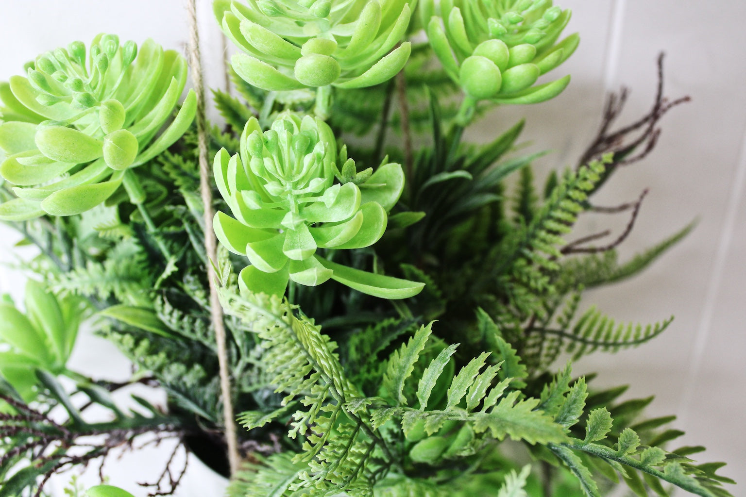 Bring the outdoors in with our 'Forever Green' range with our Potted Hanging Succulents. Ready to hang, in stylish white pot. Approx 90cm.| Bliss Gifts & Homewares | Unit 8, 259 Princes Hwy Ulladulla | South Coast NSW | Online Retail Gift & Homeware Shopping | 0427795959, 44541523