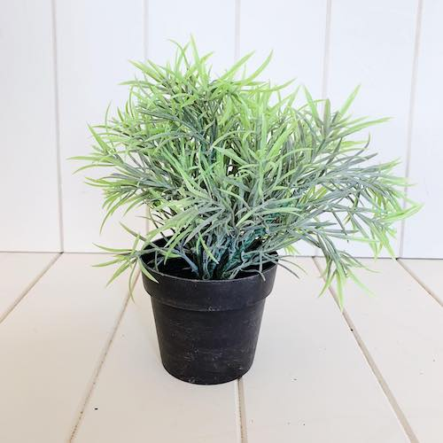 Forever Green Artificial Plants | Decorative Potted Greenery | 24cm | Bliss Gifts & Homewares | Unit 8, 259 Princes Hwy Ulladulla | South Coast NSW | Online Retail Gift & Homeware Shopping | 0427795959, 44541523