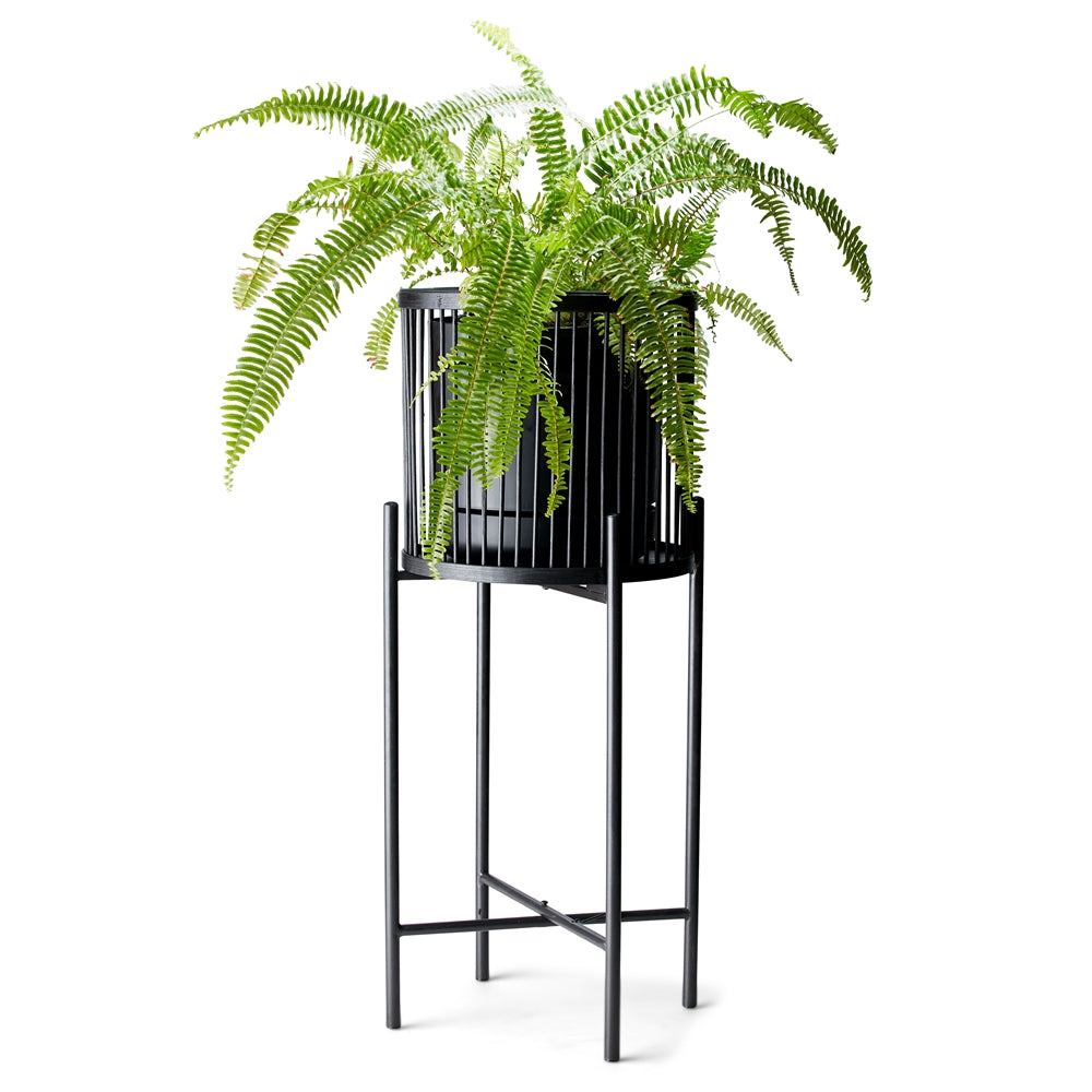 Rhythm Plant Stands - metal base - stunning black bamboo basket - Large: 35x100cm - Small: 35x80cm - Basket size: 31x31cm | Salt&Pepper |Bliss Gifts & Homewares - Unit 8, 259 Princes Hwy Ulladulla - Shop Online & In store - 0427795959, 44541523 - Australia wide shipping