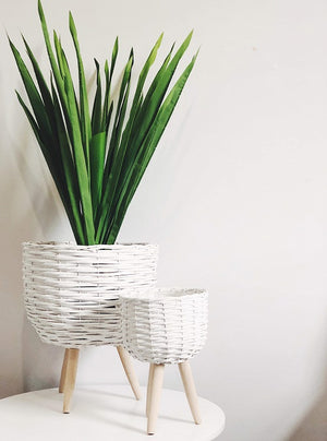 Elevate the look of your plant or floral display with our White Wicker pot Holder - Small. Indoor plants are on trend and our stylish Wicker planters are perfect for showing off your gorgeous greenery. | Bliss Gifts & Homewares | Milton | Online | 0427795959 | Afterpay available