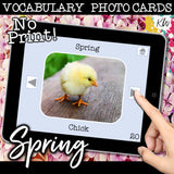 NO PRINT Spring and Easter Vocabulary Flashcards