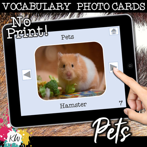 NO PRINT Pets Vocabulary Flashcards