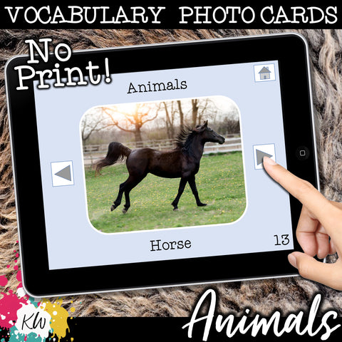 NO PRINT Animal Vocabulary Flashcards