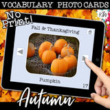 NO PRINT Fall and Thanksgiving Vocabulary Flashcards