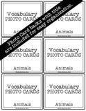 Animals PHOTO CARDS The Elementary SLP Materials Shop