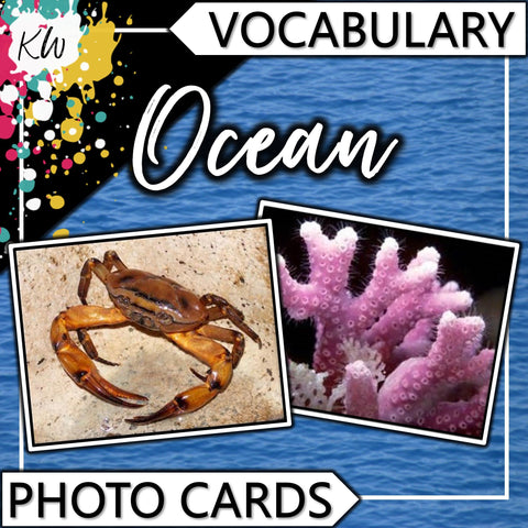 Ocean PHOTO CARDS The Elementary SLP Materials Shop