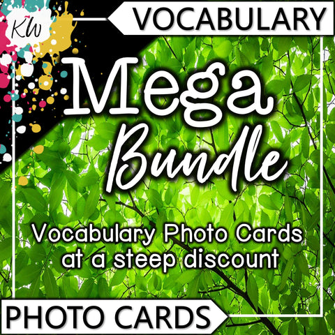 Vocabulary PHOTO CARDS Mega Bundle The Elementary SLP Materials Shop