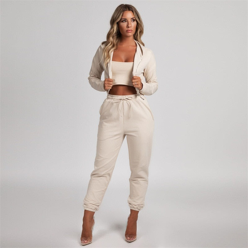 Two Piece Set Hooded Tracksuit