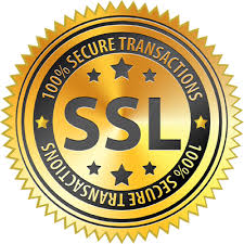 Seal of security showing SSL transactions enabled on this site.