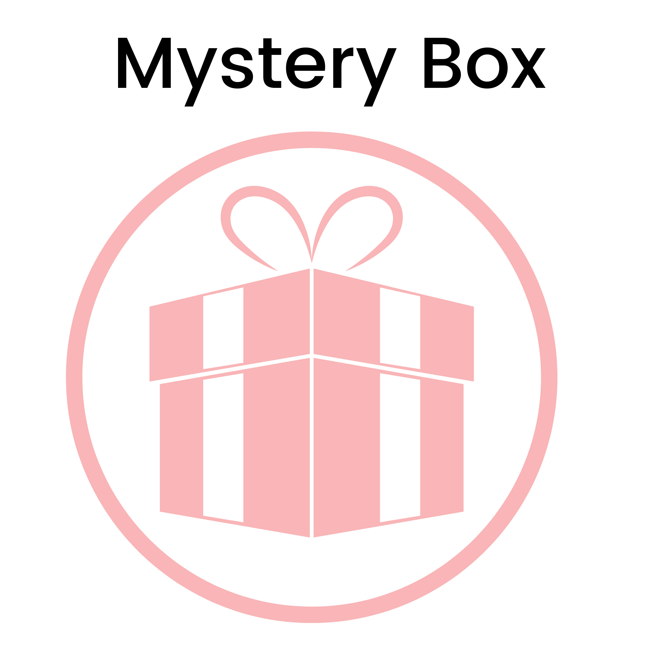 NEW Mystery Box #2      LIMITED QUANTITY