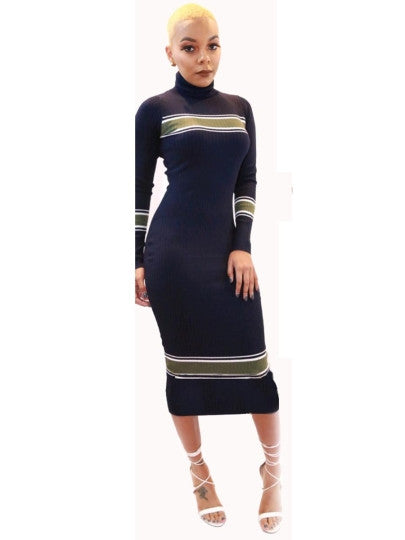 Turtle Neck Long Sleeve Women's Sweater Dress - ShoppingDailyDeals